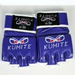 MMA Fight Gloves - Purple